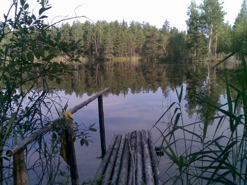Пункт приема маталла в Лесное Озеро сколько стоит алюминий 1 кг в Егорьевск
